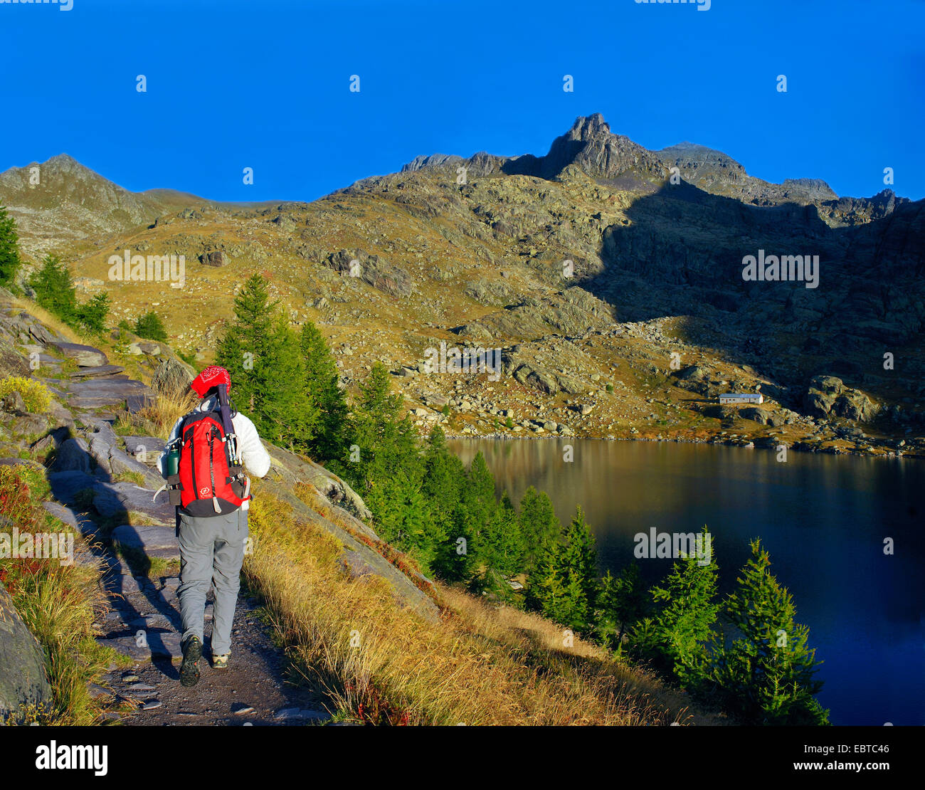 wanderer on a hiking path near the lake Lac Long Superieur, France, Alpes Maritimes, Mercantour National Park, Belvedere - Stock Image