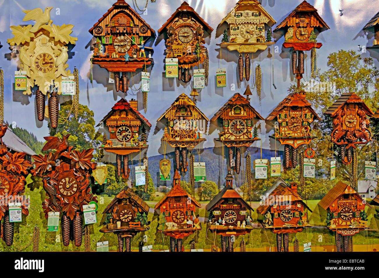 a lot of cockoo clocks in a shop window, Germany, Baden-Wuerttemberg, Black Forest, Triberg - Stock Image