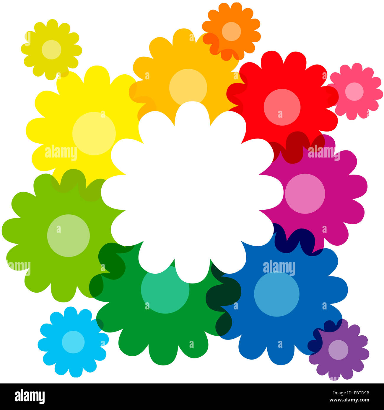 Rainbow Colored Flowers Forming A Colorful Bouquet And Frame To