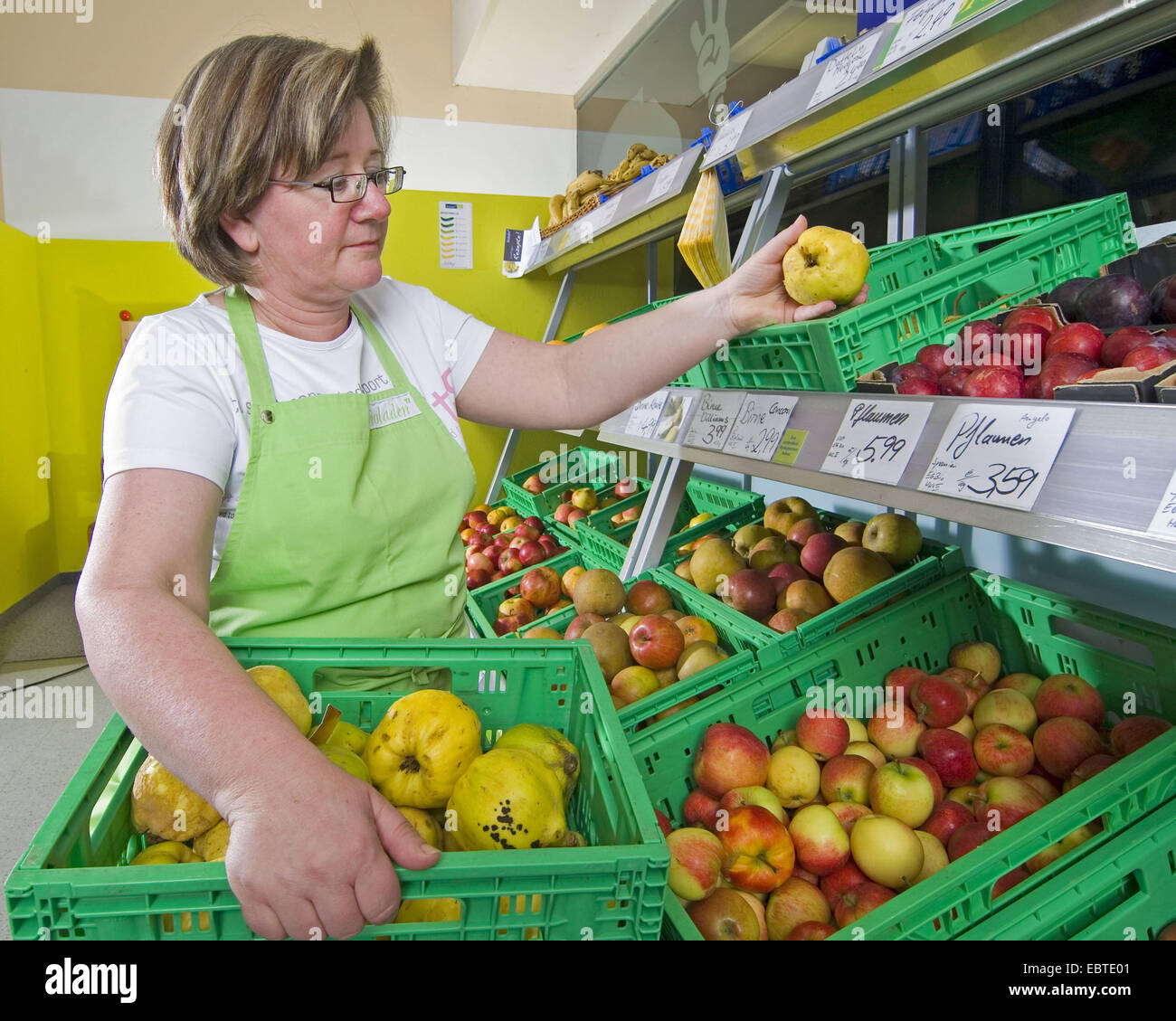 retail saleswoman placing quinces into a fruit rack - Stock Image