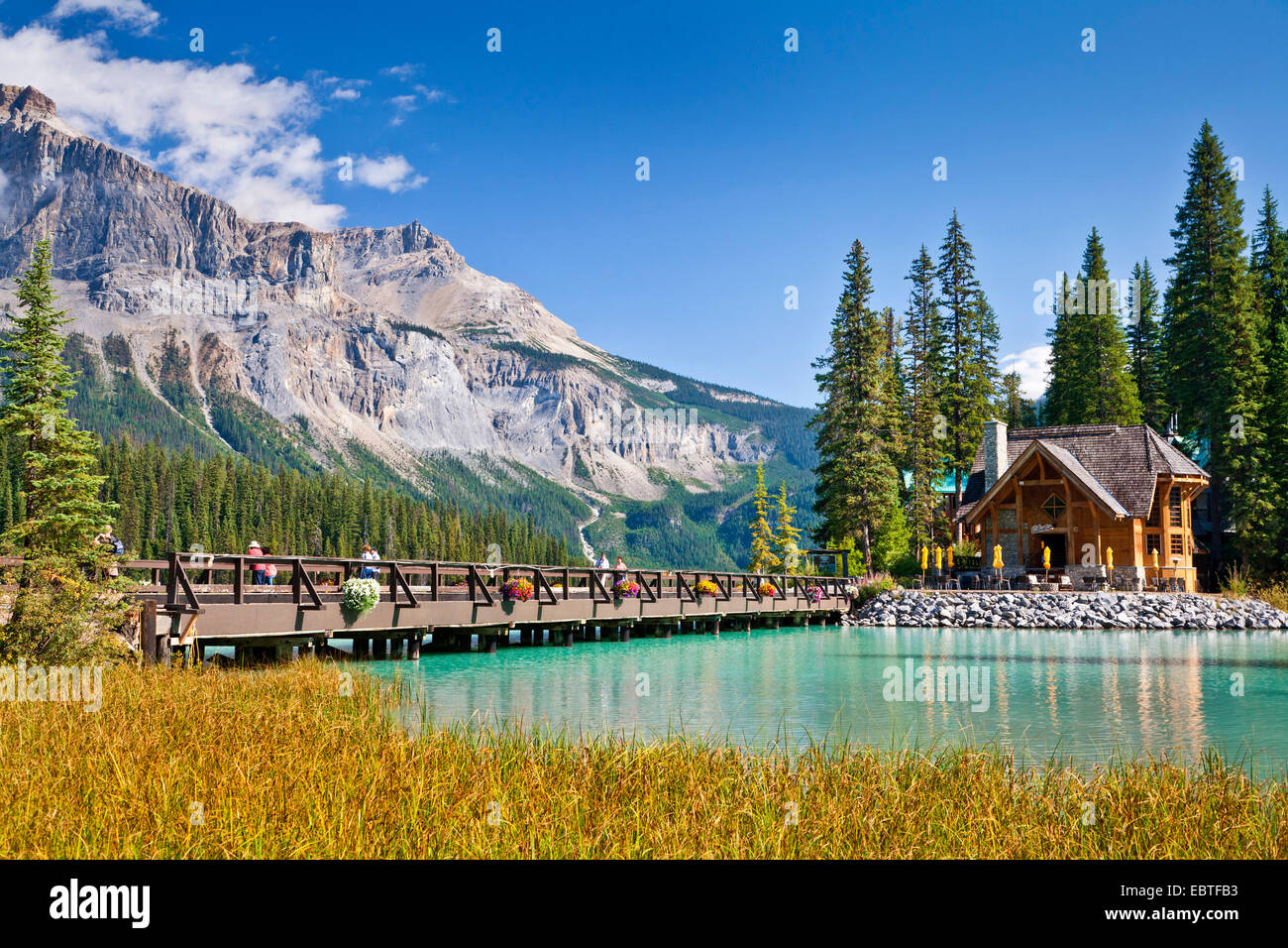 log house in Yoho National Park, Canada, British Columbia, Yoho National Park - Stock Image