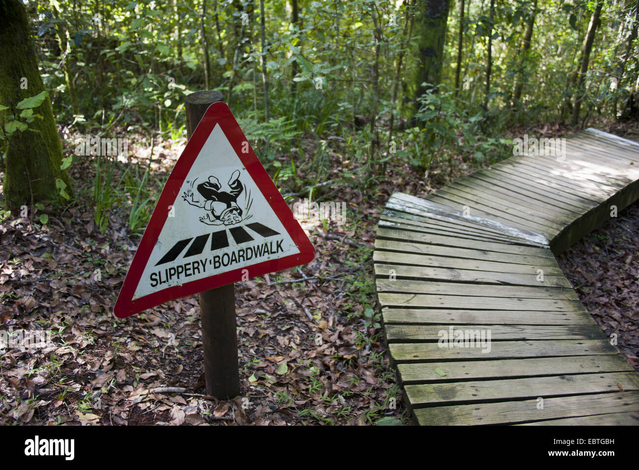 warning sign for slippery planks in virgin forest, South Africa, Eastern Cape, Tsitsikamma National Park Stock Photo