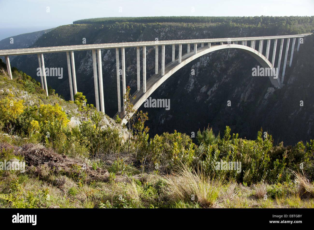 Bloukrans River Bridge, South Africa, Eastern Cape, Tsitsikamma National Park Stock Photo