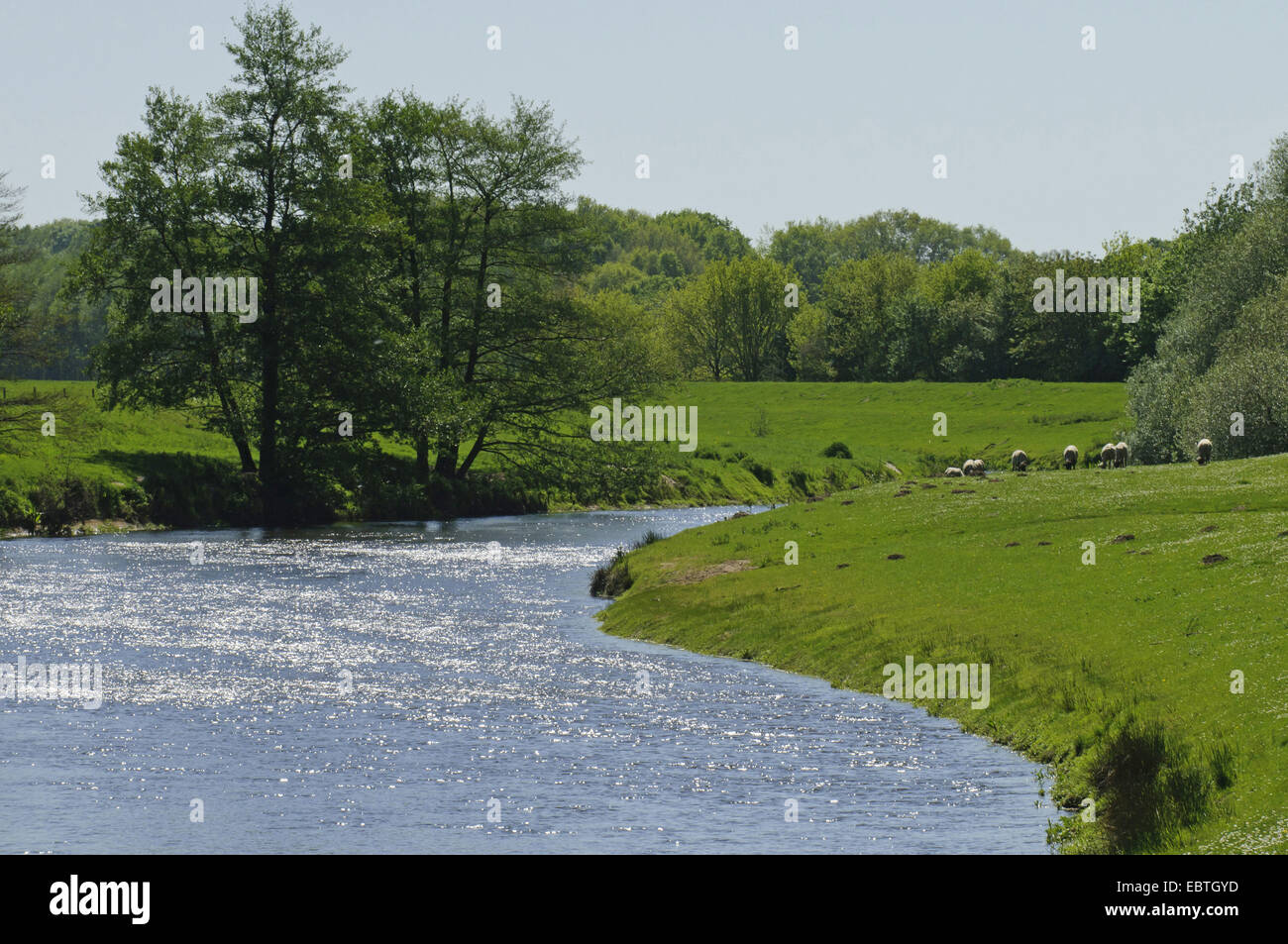 river Hunte running through a pictoresque summer meadow landscape at the level of Astrup, Germany, Lower Saxony, - Stock Image