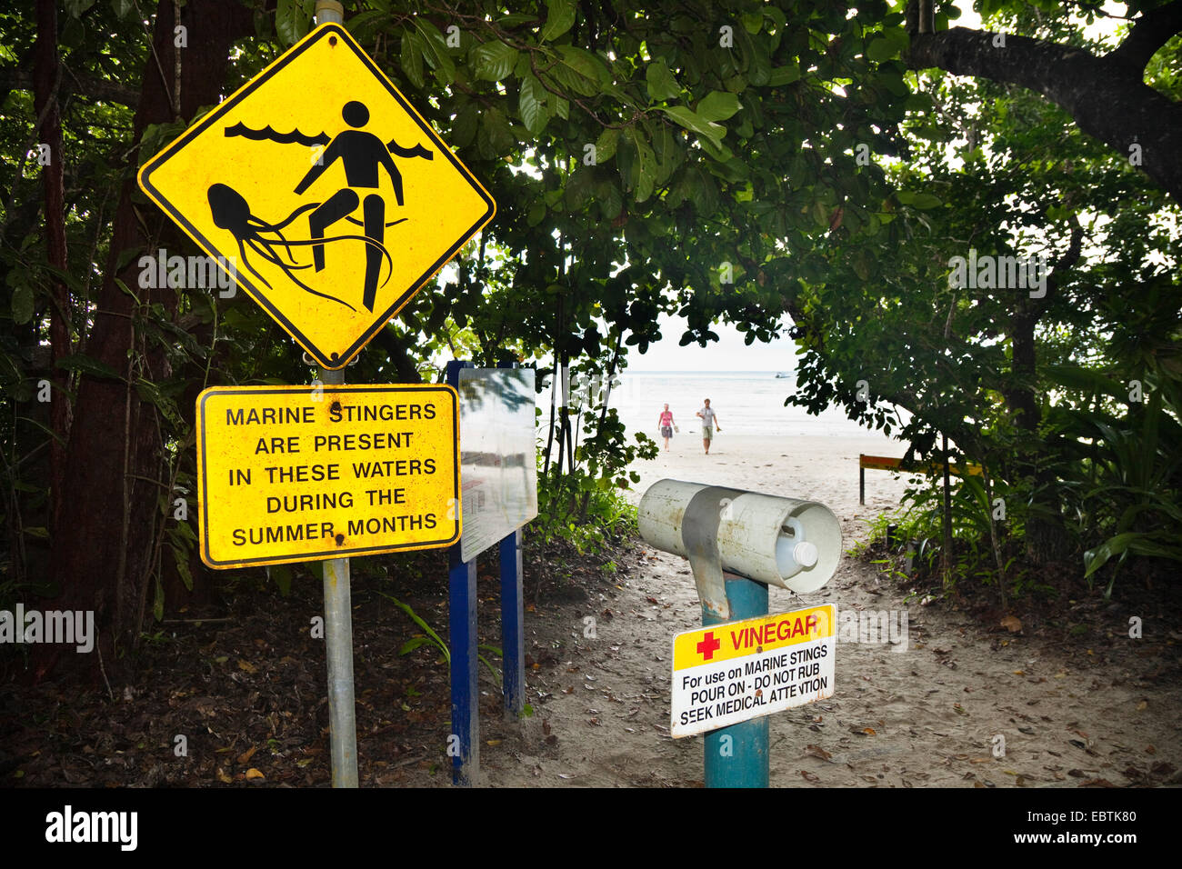 stinger warning sign at the path to Cape Tribulation beach, Australia, Queensland - Stock Image