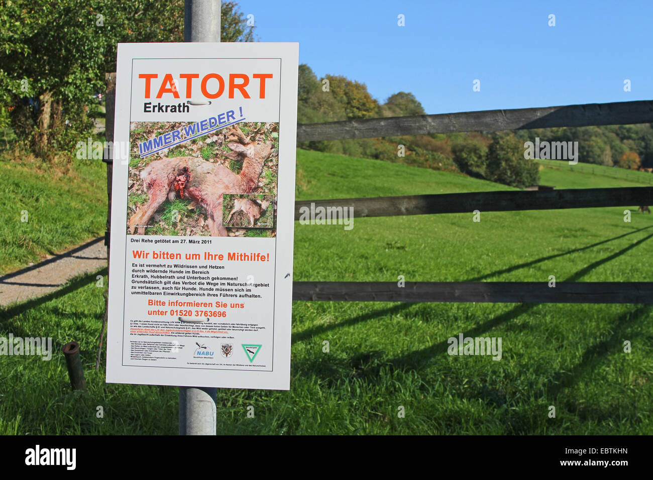 sign informing about disturbance and of killing of wild by dogs, Germany, North Rhine-Westphalia, Erkrath - Stock Image