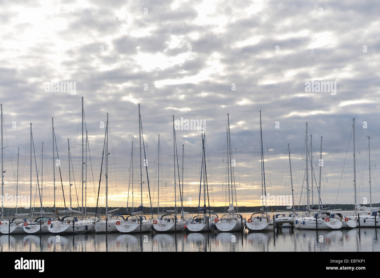 sailing boats in the yacht harbour at sunrise, Germany, Mecklenburg-Western Pomerania, Ruegen Stock Photo