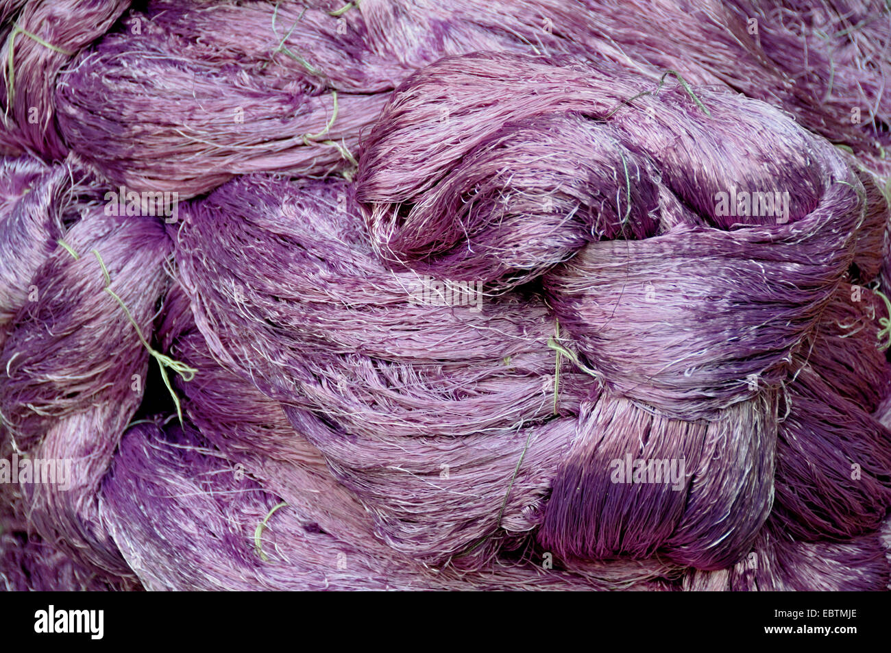 violet dyed wool drying, Morocco, Marrakesh, Fes - Stock Image