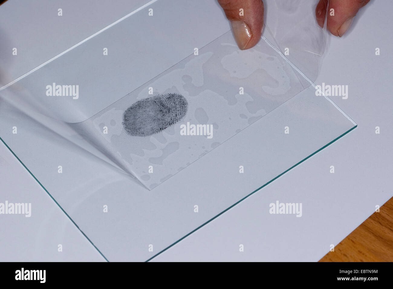 fingerprint fixed with graphite - Stock Image