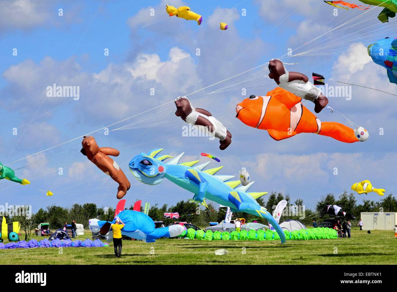 kites at the kite festival in Schillig, Germany, Lower Saxony, Frisia, Wangerland - Stock Image