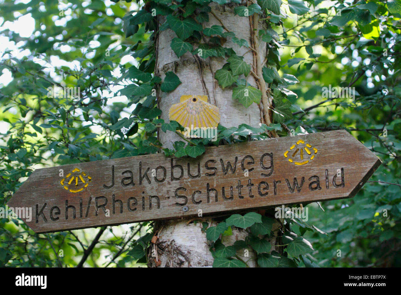 trail sign to Way of St. James , Germany, Baden-Wuerttemberg, Ortenau Stock Photo