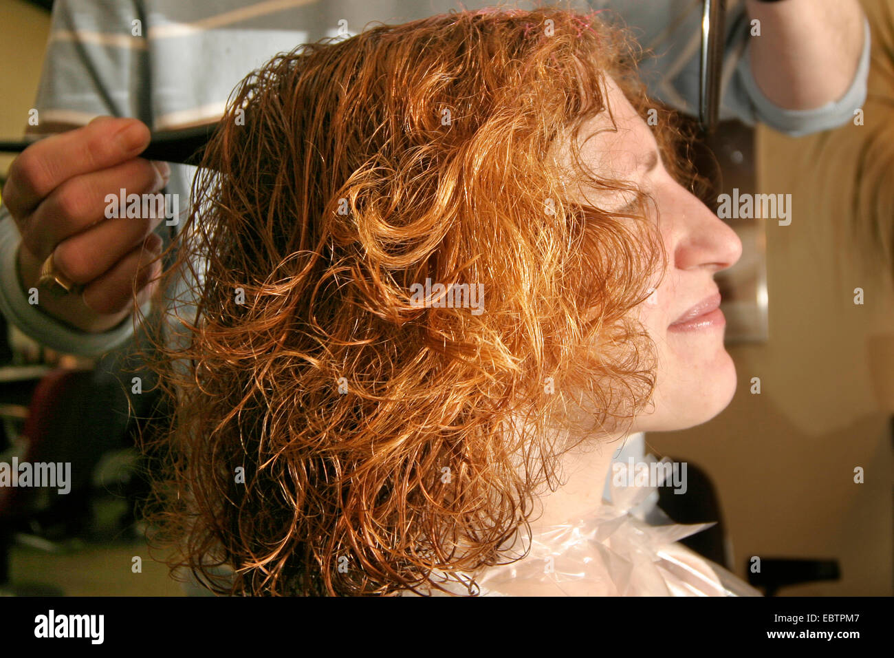 hairdresser dyeing woman's hair - Stock Image