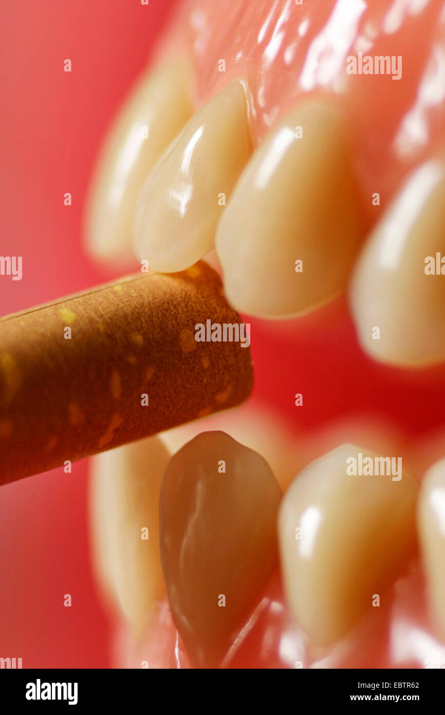 artificial denture with cigarette - Stock Image