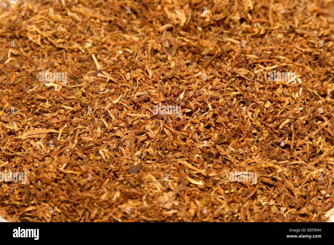 American Blend tobacco, Germany, North Rhine-Westphalia - Stock Image
