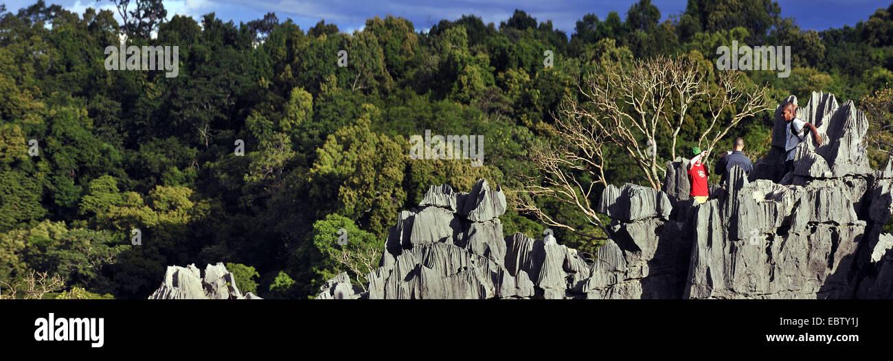 tourists in karst landscape, Madagascar, Nationalpark Tsingy de Bemaraha, Tsingy Stock Photo
