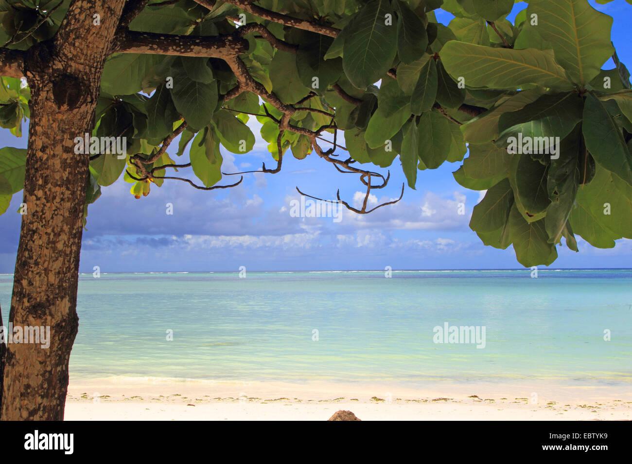 view to Indian Ocean, Tanzania, Sansibar - Stock Image