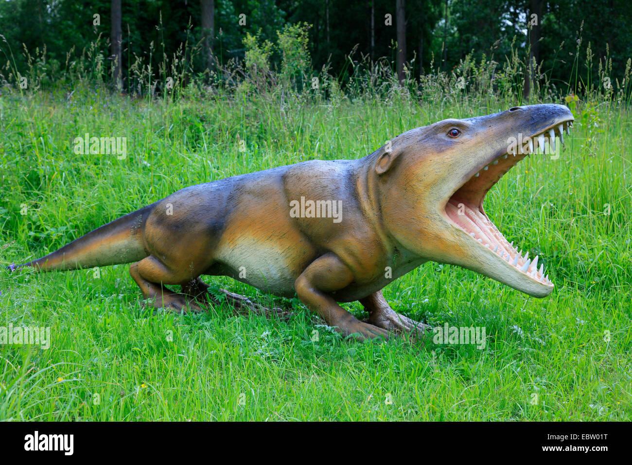 Ambulocetus (Ambulocetus natans), primitive extinct species of wales - Stock Image