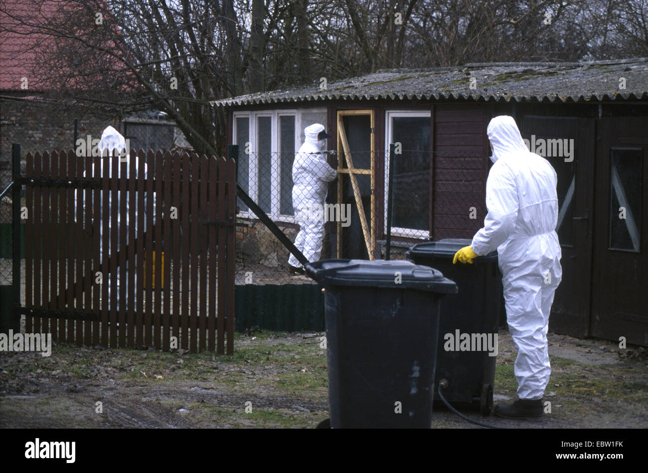 three epidemiologists in protective suits on a farm hit by the bird flu, Germany, - Stock Image