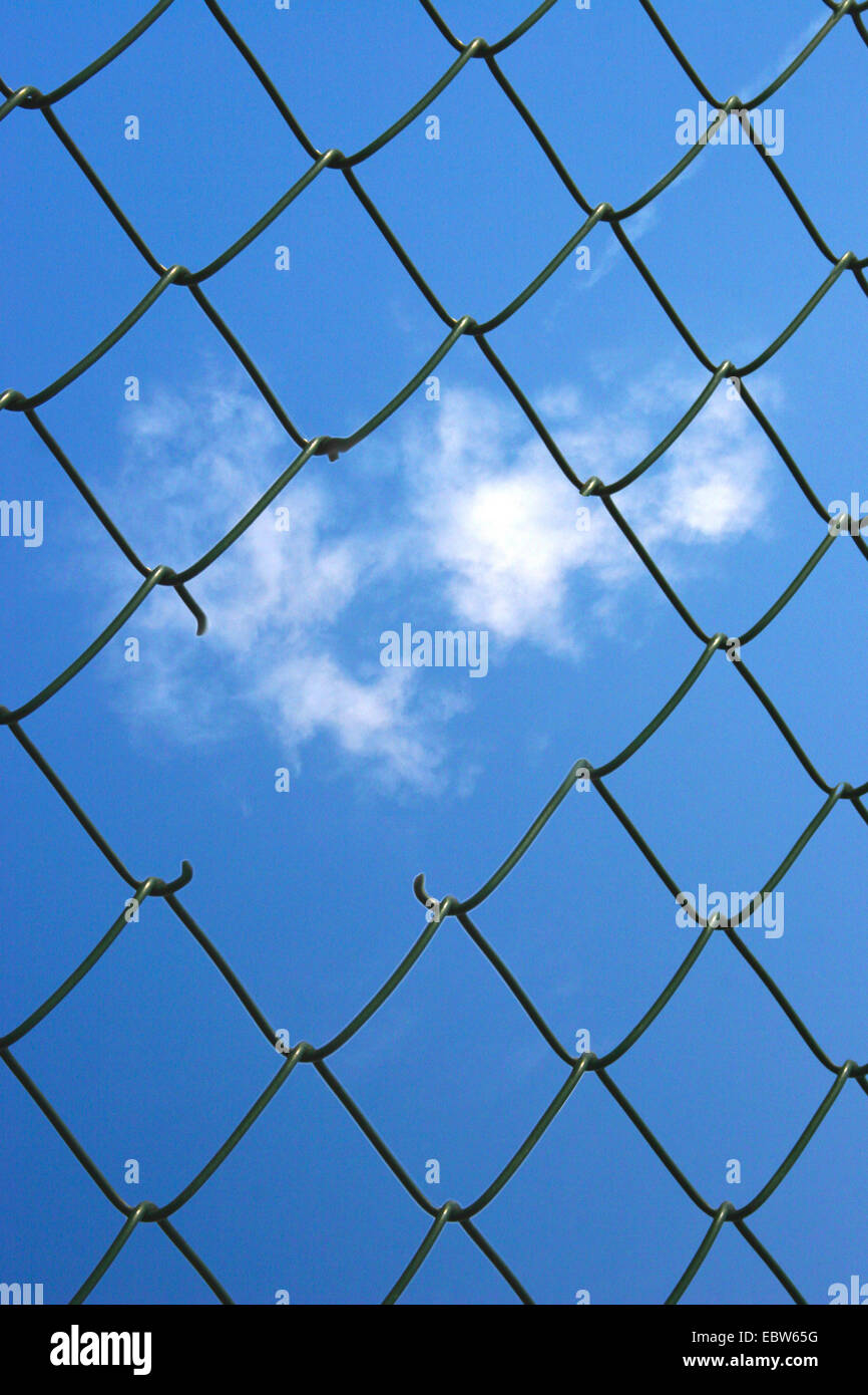a hole in the wire mesh - Stock Image