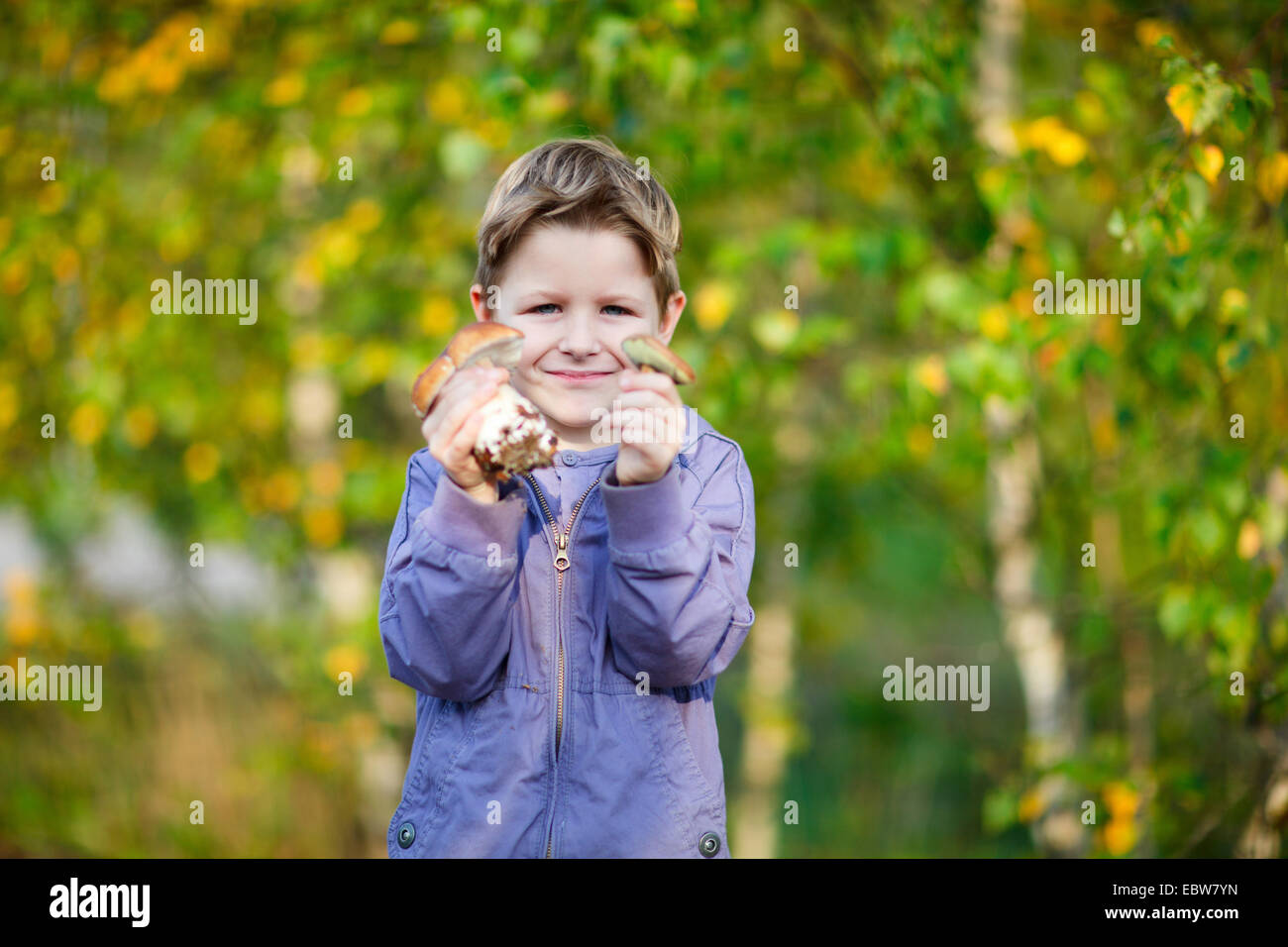 a little boy showing two wild mushrooms - Stock Image