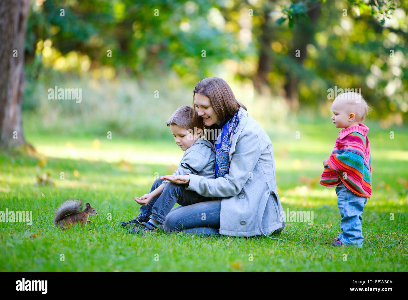mother and her two children feeding a red squirrel - Stock Image