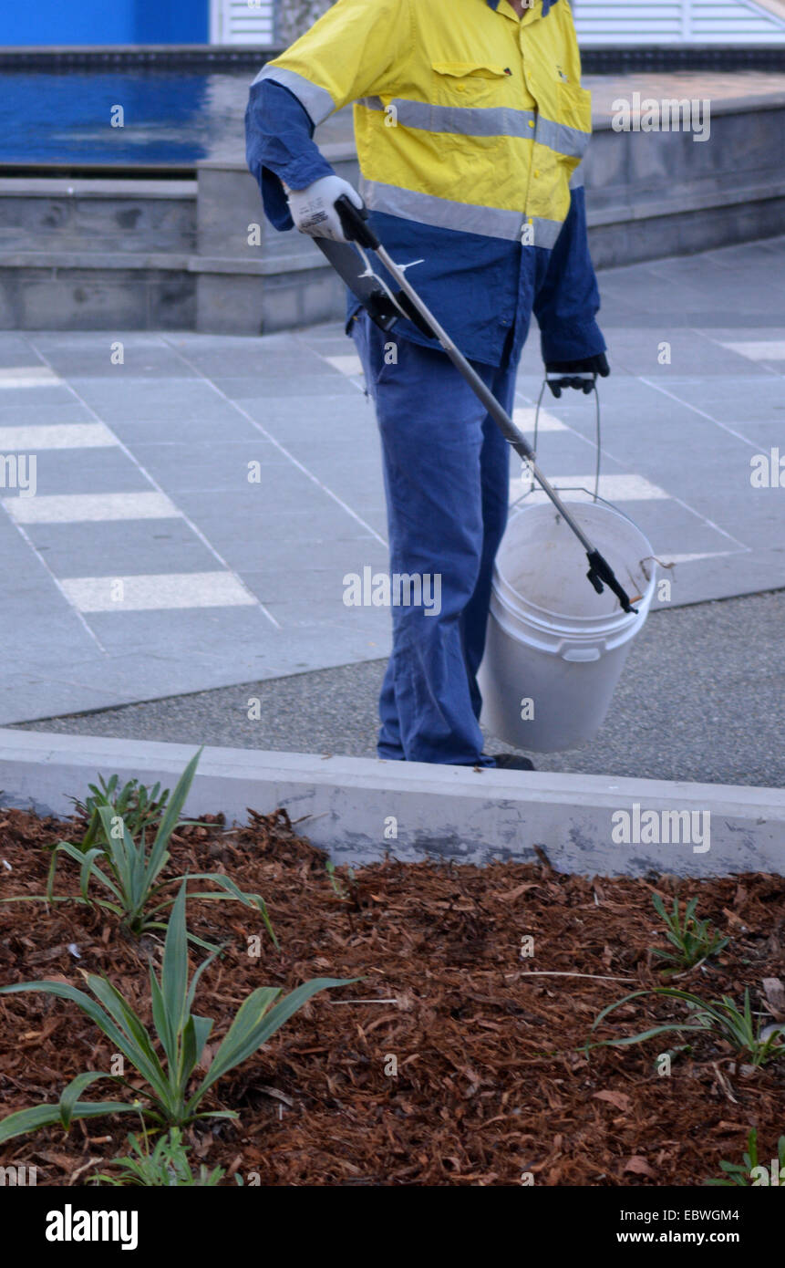 SURFERS PARADISE, AUS - NOV 09 2014:Road Sweeper Janitor cleaning street with pointed steel pin tool. - Stock Image