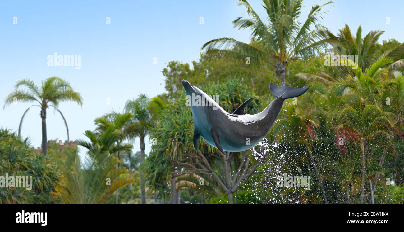 GOLD COAST, AUS -  NOV 11 2014:Bottlenose Dolphin jumps in the air.It's the most common species of dolphin kept - Stock Image