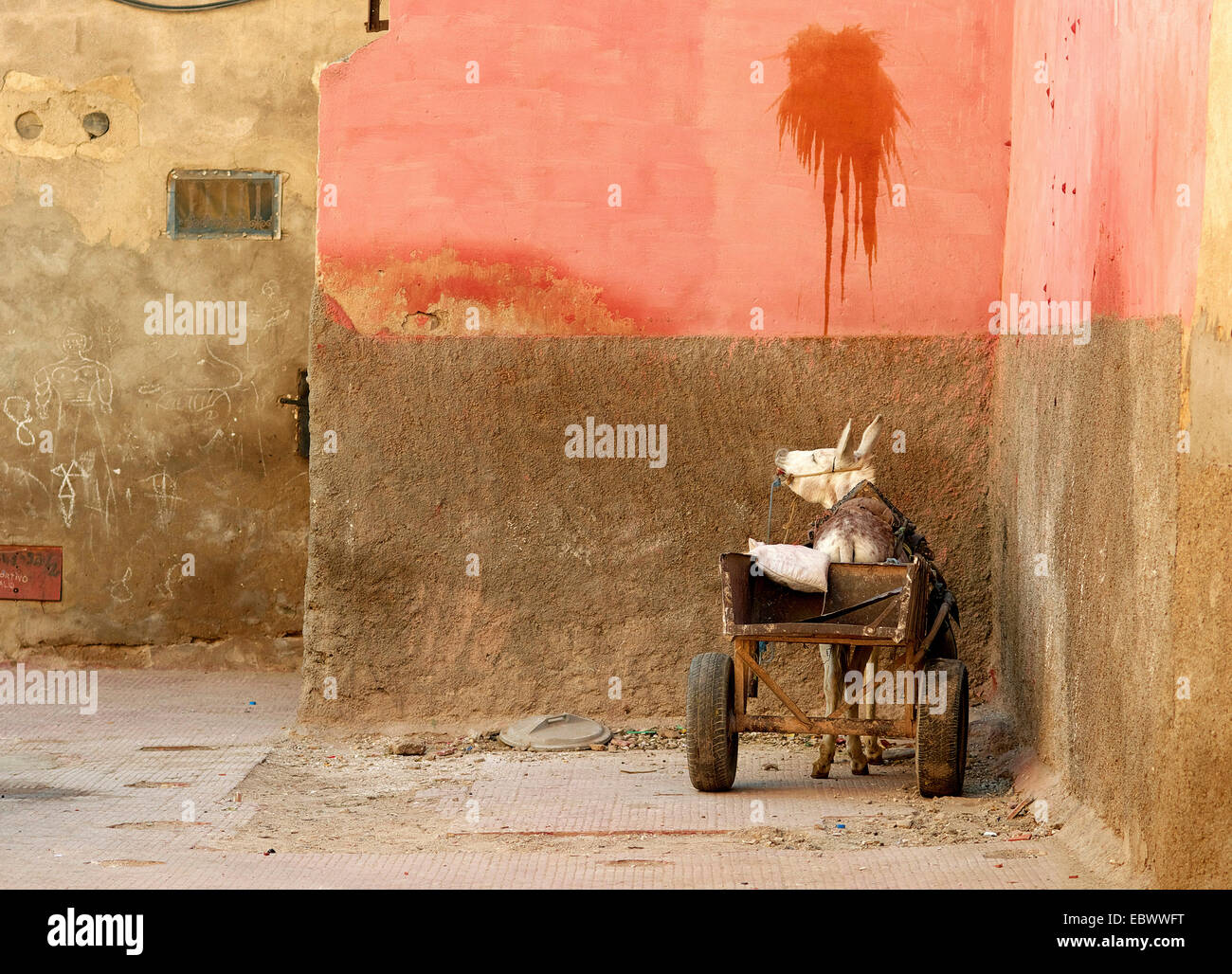 donkey with cart at souks of marrakesh, Morocco, Marrakesh - Stock Image