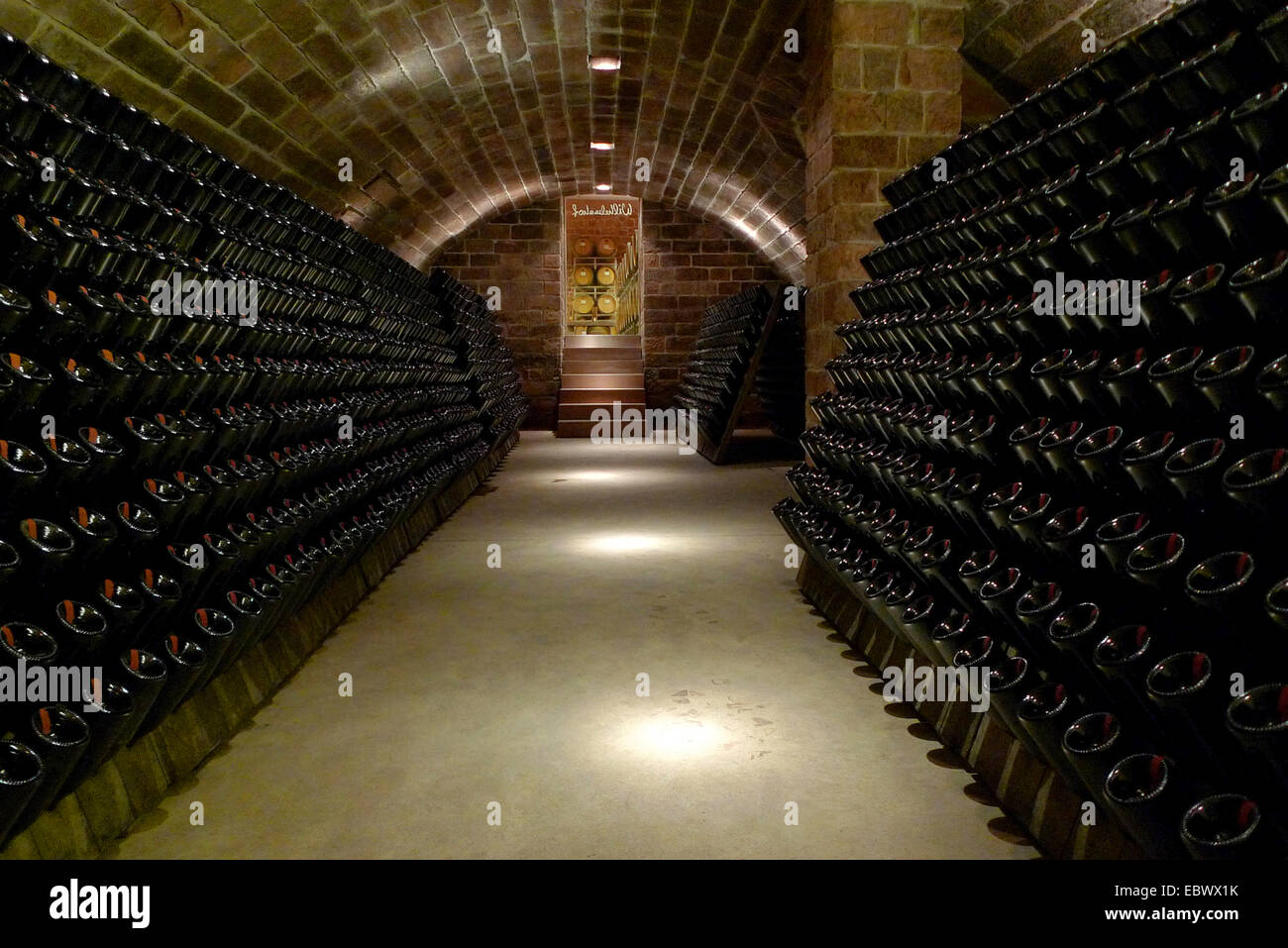 Exceptionnel Storage Room Champagne Bottles In Winery, Germany, Rhineland Palatinate    Stock Image