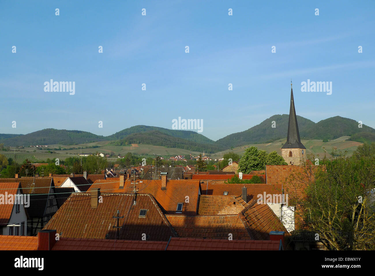 wine town Sieblingen, Germany, Rhineland-Palatinate, Siebeldingen Stock Photo