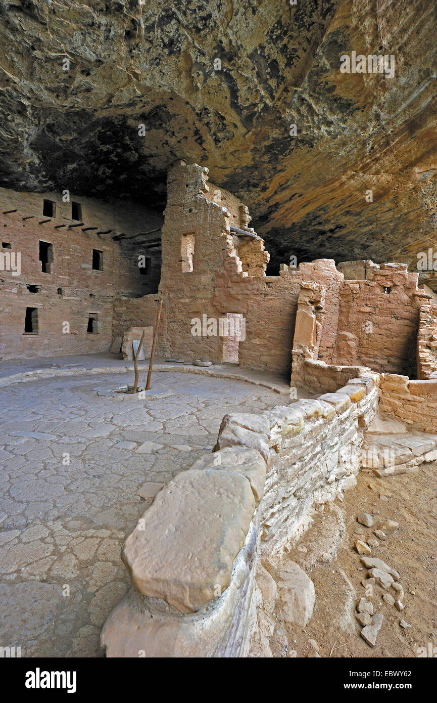 Spruce Tree House, cliff dwellings of Ancient Puebloan Native Americans, USA, Colorado, Mesa Verde National Park - Stock Image