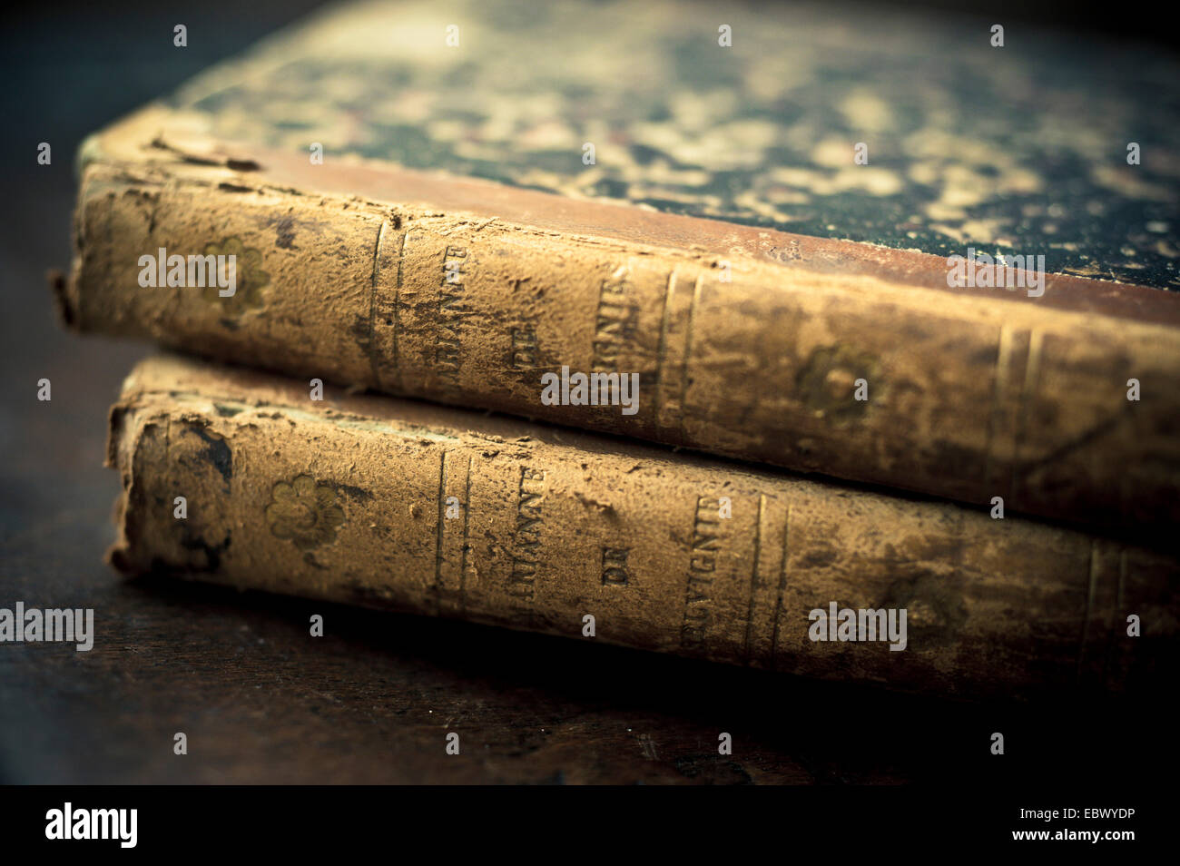 two old French books - Stock Image