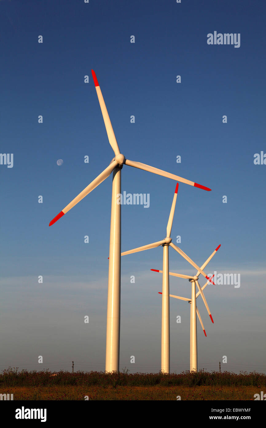 Wind farm at Kap Kaliakra, Bulgaria - Stock Image