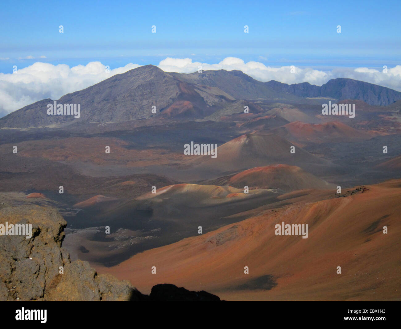 crater of Haleakala volcano, USA, Hawaii, Maui - Stock Image