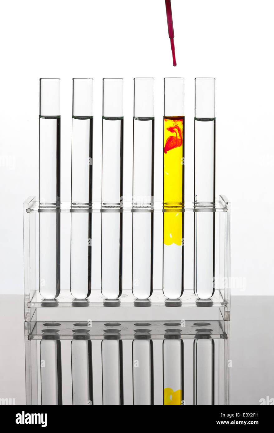 test tubes with colourless liquid standing in a test tube rack, yellow and red liquids are dribbled into one of - Stock Image