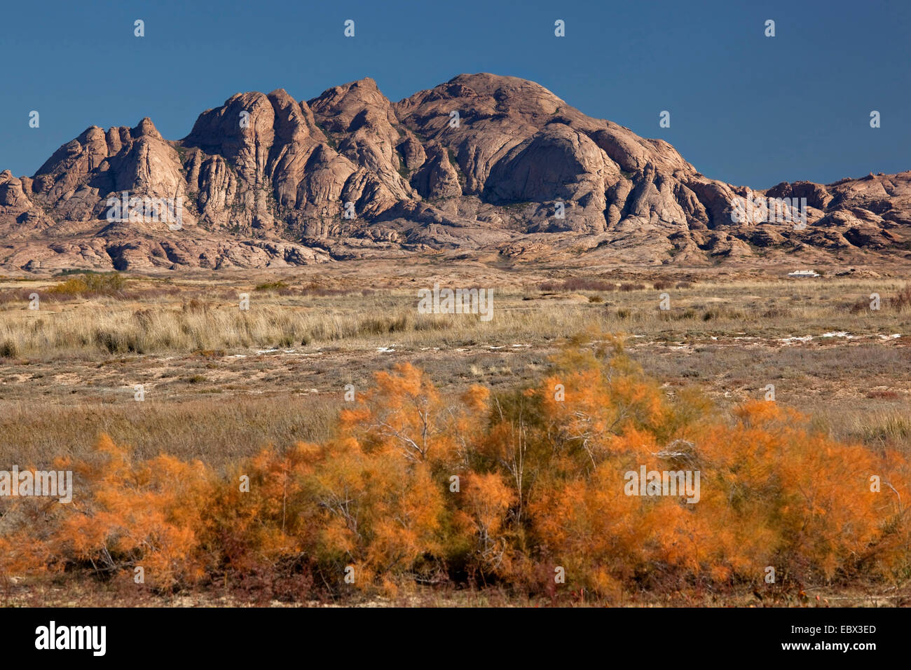 rock formation looming from a steppe landscape, Kazakhstan, Suedost-Kasachstan, Balchasch - Stock Image
