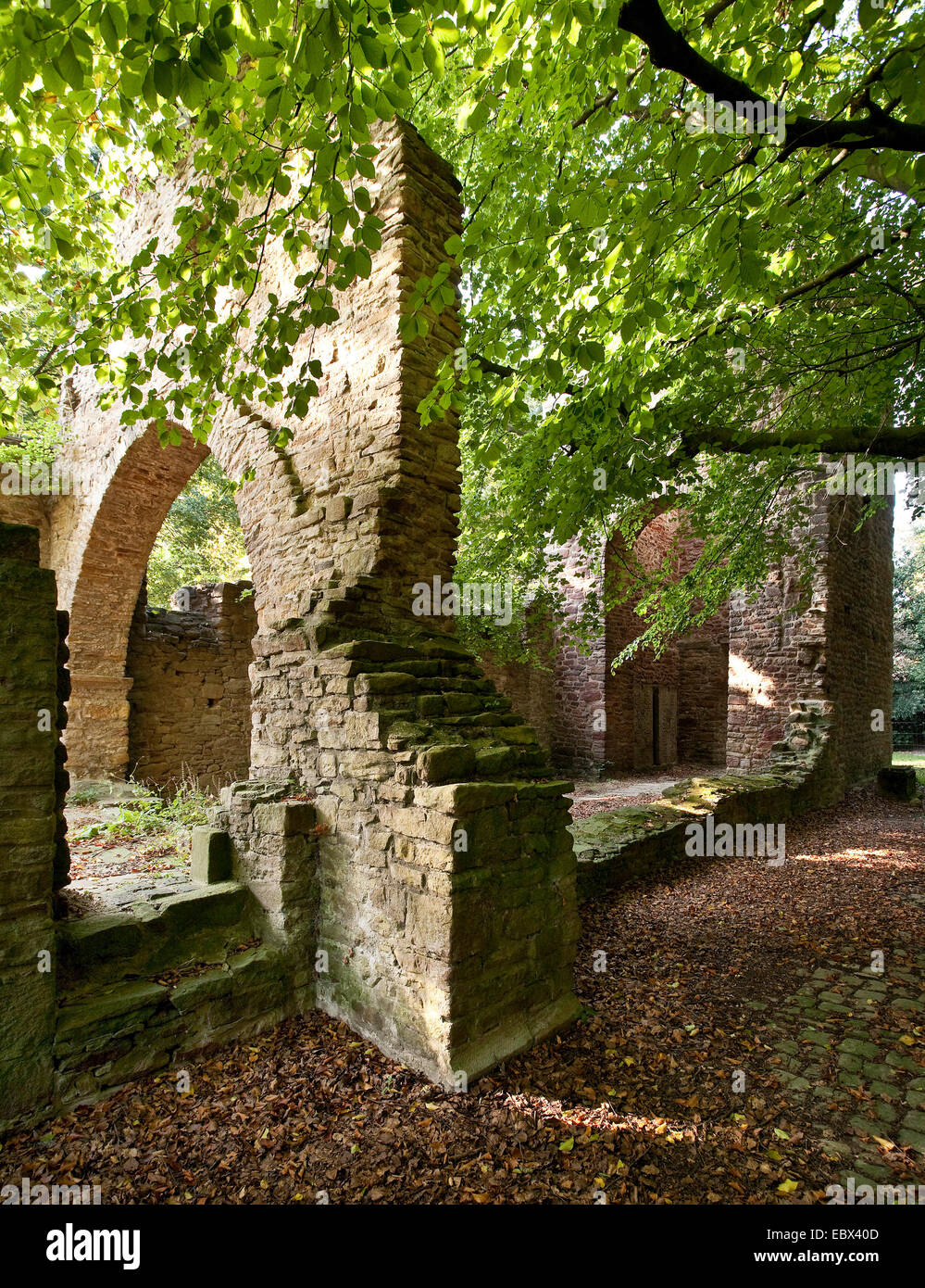 ruins of chapell of Weitmar castle, Germany, North Rhine-Westphalia, Ruhr Area, Bochum - Stock Image