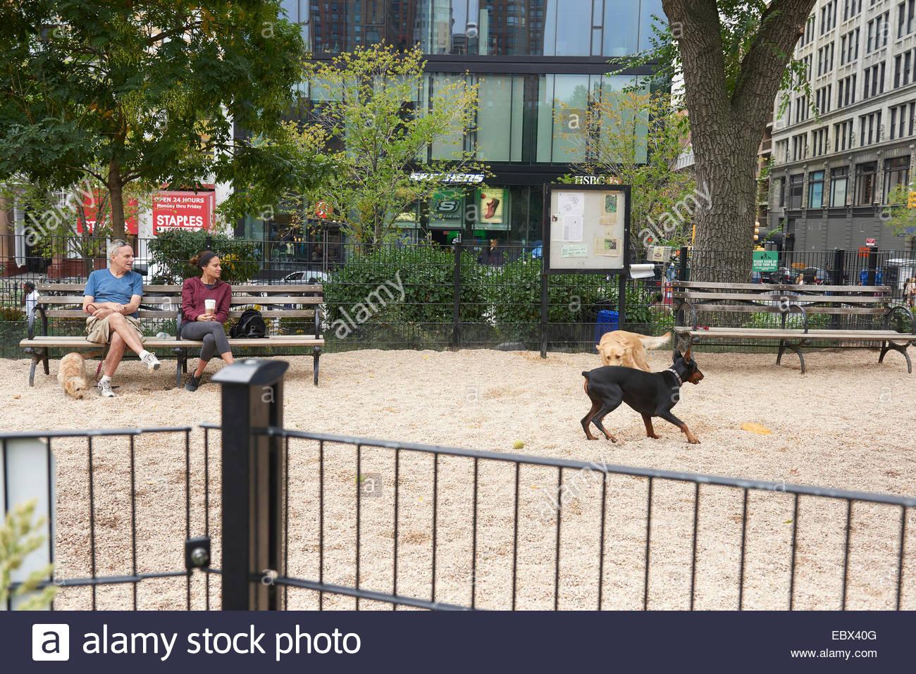 Dog excercise park in Manhattan,New York - Stock Image