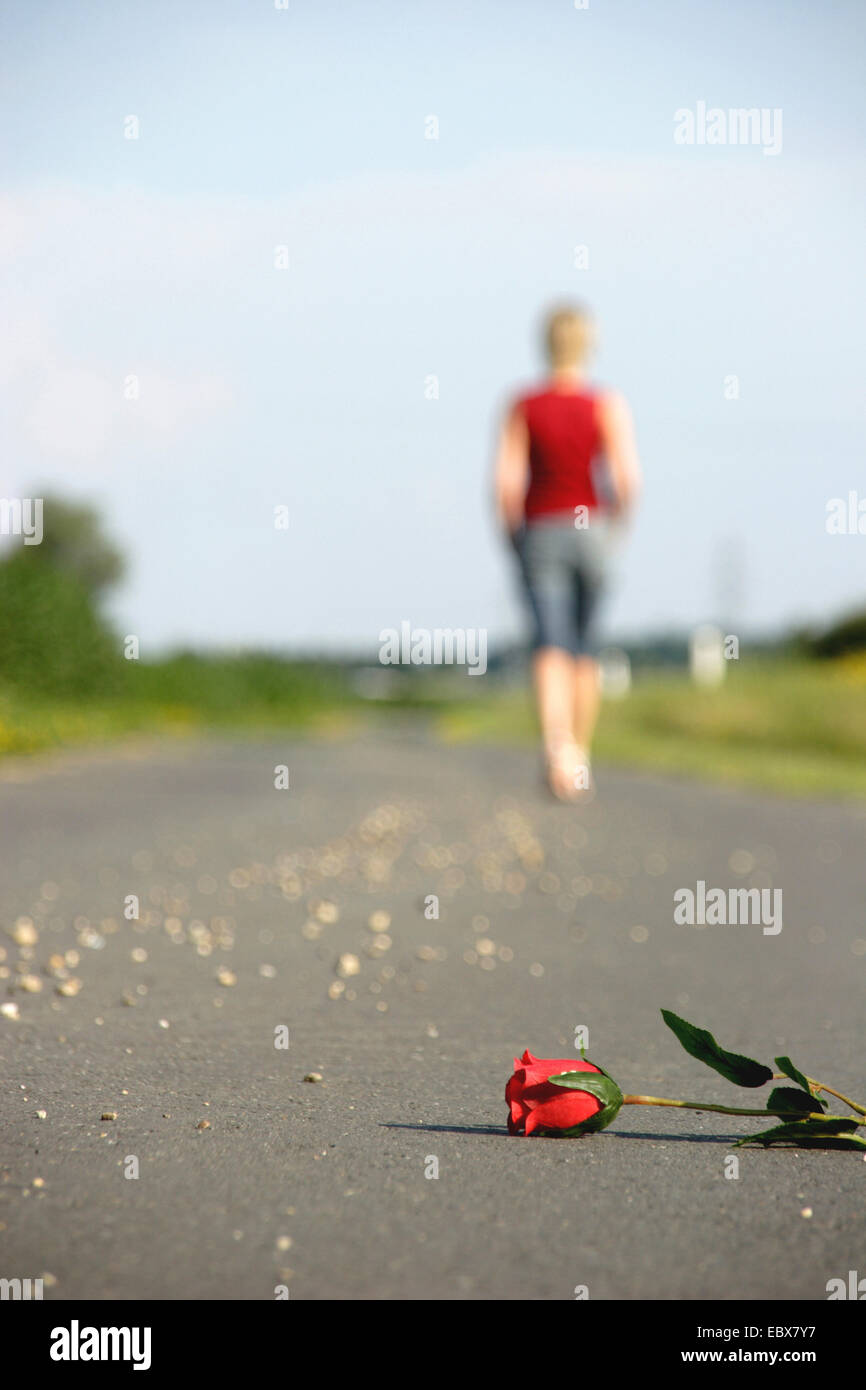 past love, woman going away and leave a red rose - Stock Image