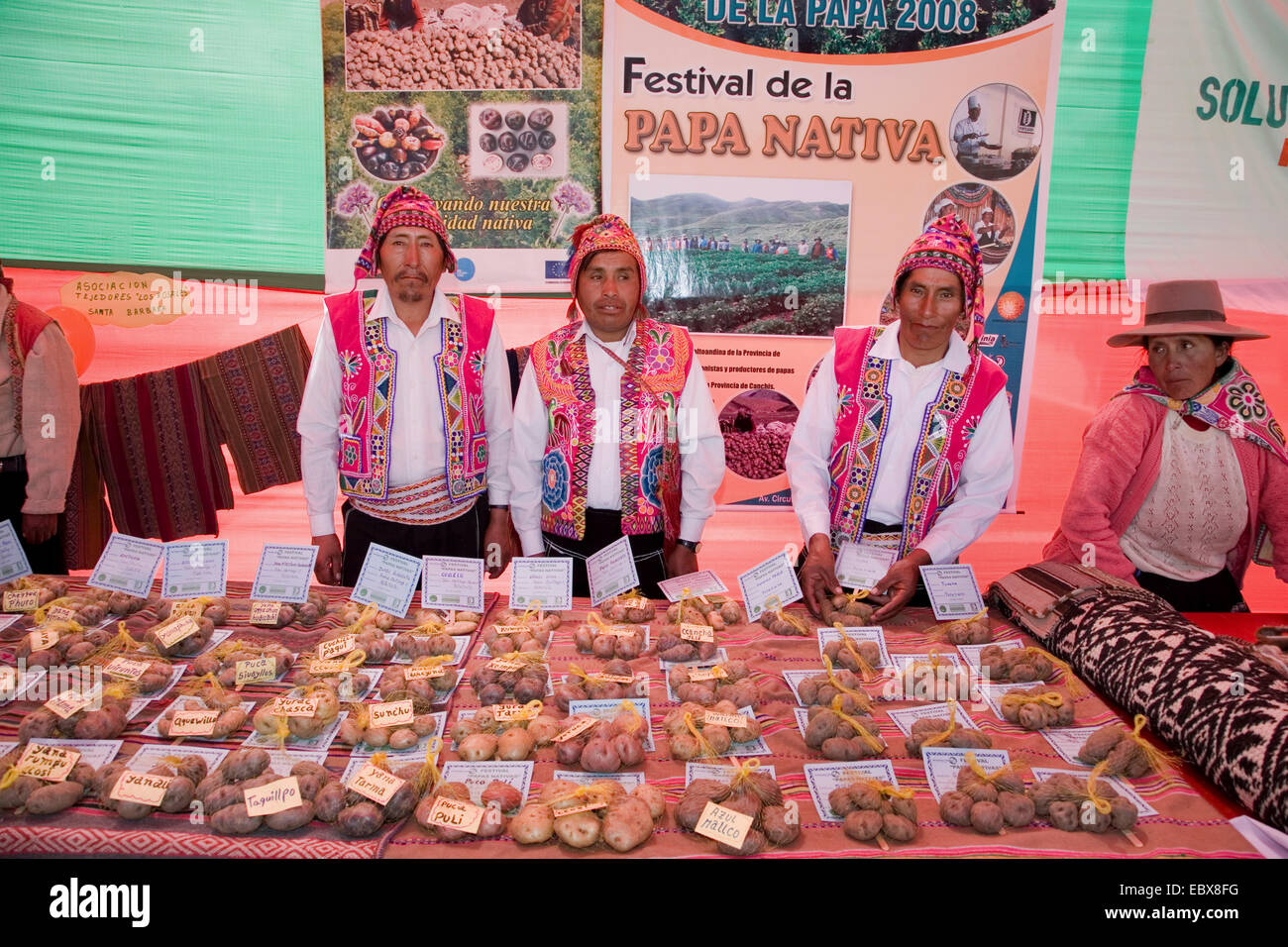 ceremoniously dressed greengrocers selling native potatoes at a traditional festival, Peru, Cuzco - Stock Image