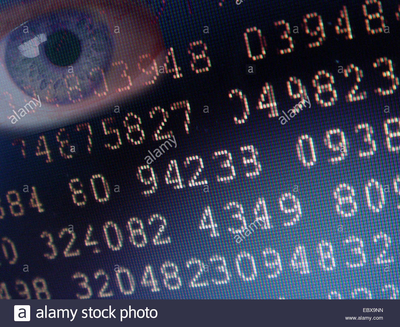 stored data - Stock Image