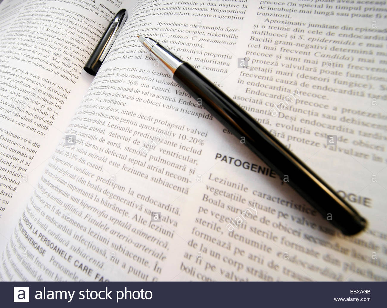 Open Book With Pen On It Stock Photo: 76181739