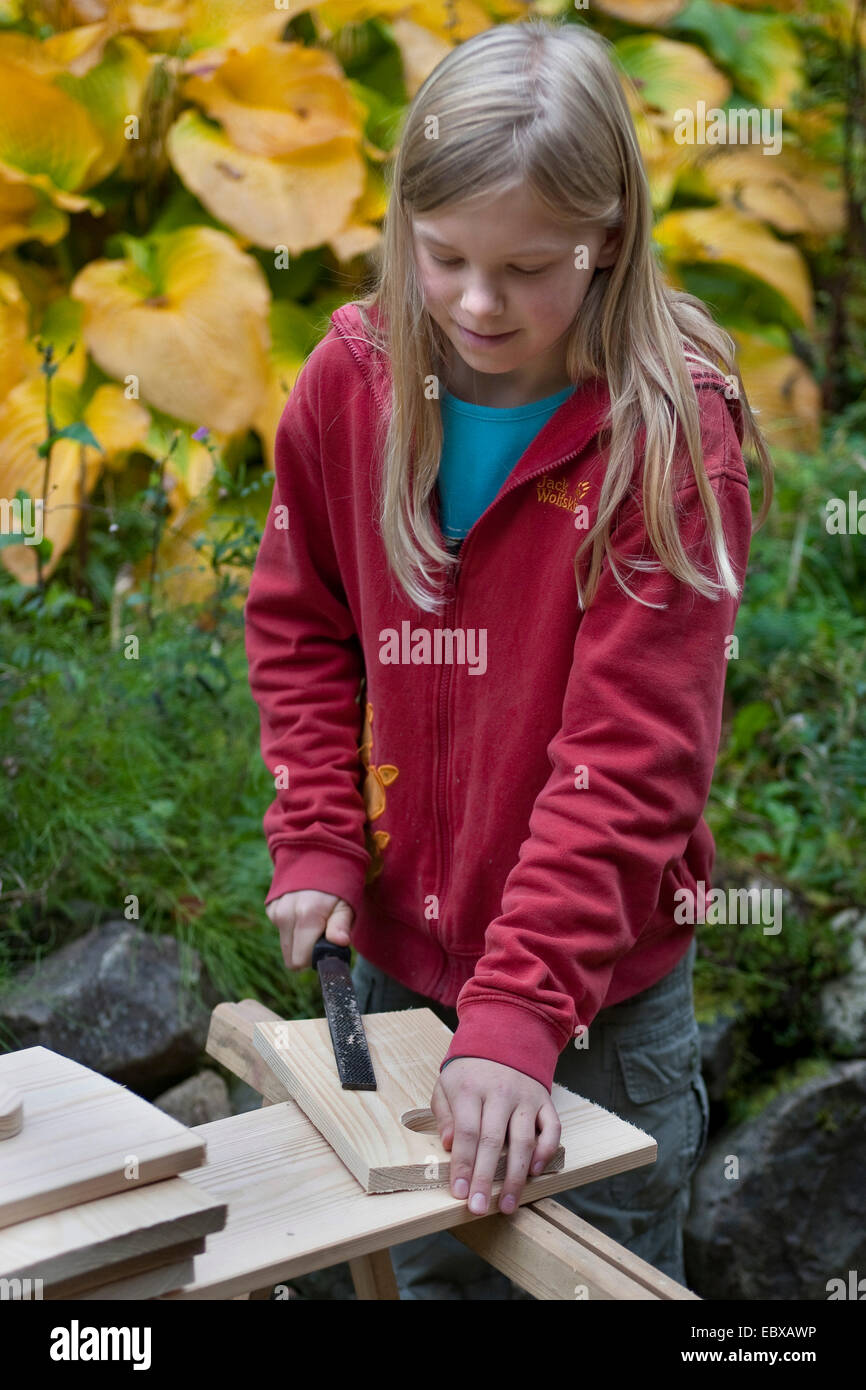 building a nest box. Girl using a file - Stock Image