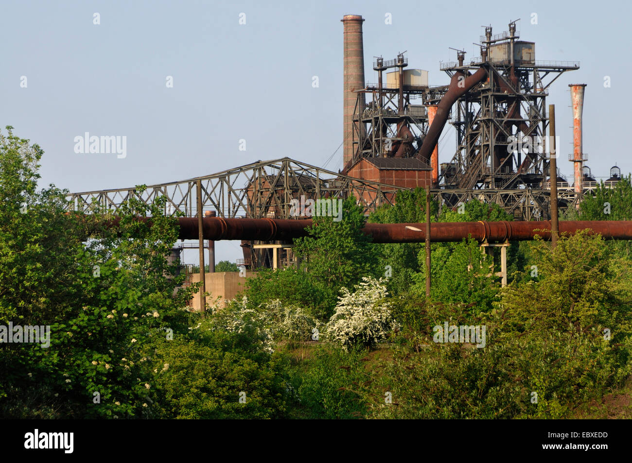 old heavy industry of Duisburg-Meiderich and industrial forest, Germany, North Rhine-Westphalia, Ruhr Area, Duisburg - Stock Image