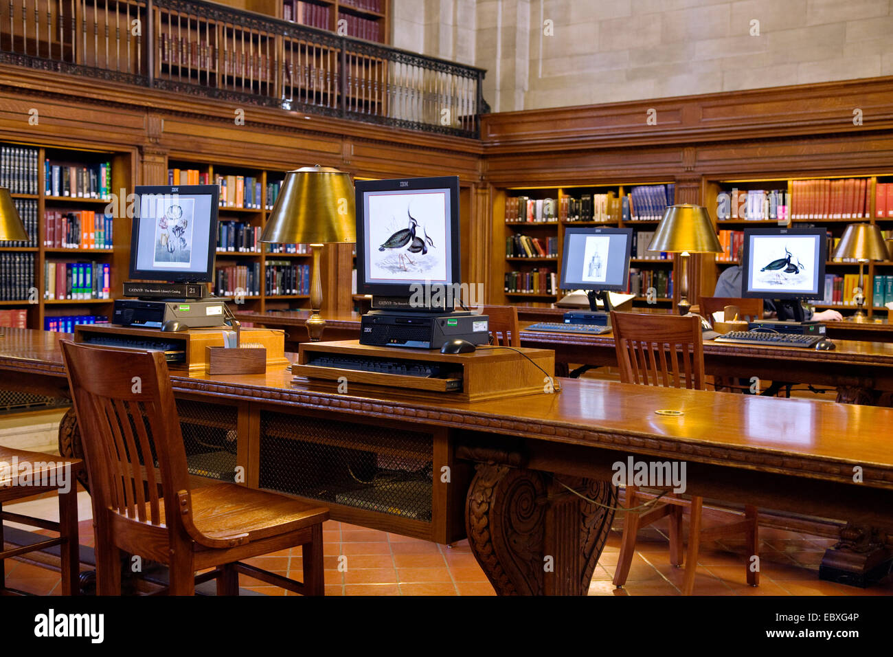 COMPUTER TERMINALS - ROSE READING ROOM - NEW YORK CITY PUBLIC LIBRARY, USA, New York City - Stock Image