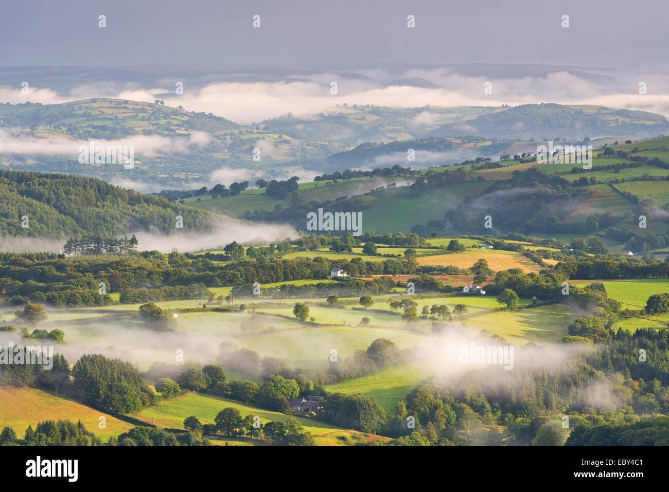 Mist covered rolling countryside at dawn, Brecon Beacons, Wales. Summer (August) 2014. - Stock Image