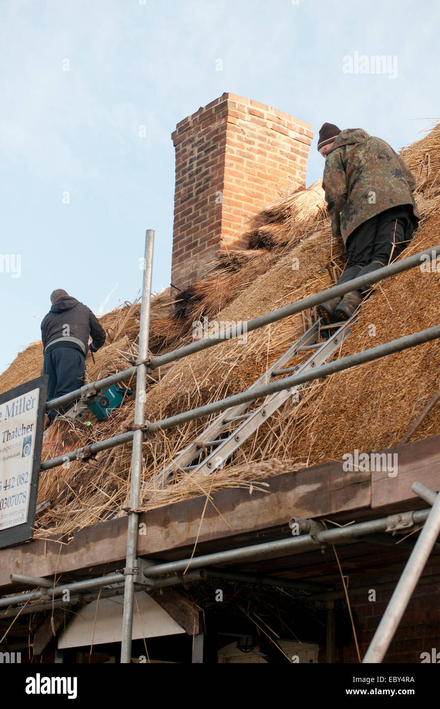 Lee Miller Master Thatcher thatching roof - Stock Image