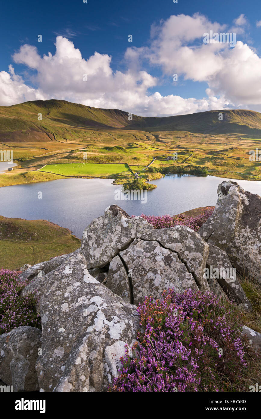 Llynnau Cregennen and Cadair Idris, Snowdonia National Park, Wales. Autumn (September) 2013. - Stock Image