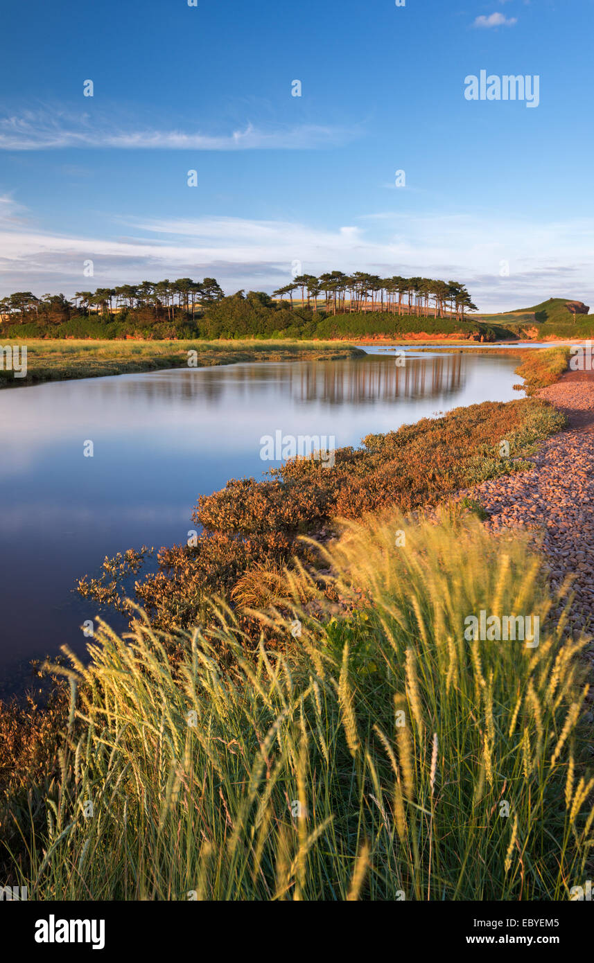 Otter Estuary at Budleigh Salterton, Devon, England. Summer (July) 2014. - Stock Image