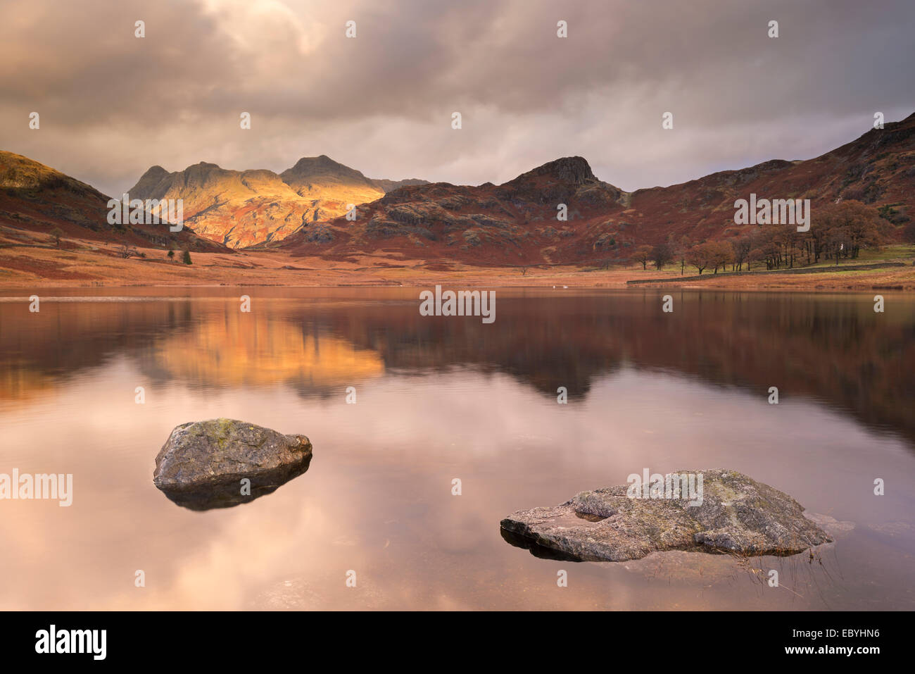 Early morning sunshine on the Langdale Pikes, reflected in Blea Tarn, Lake District, Cumbria, England. Autumn (November) - Stock Image